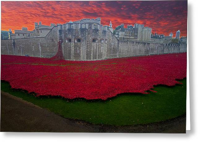 Recently Sold -  - Chatham Greeting Cards - Poppies Tower of London Greeting Card by David French