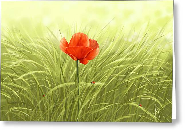 Insect Digital Greeting Cards - Poppy Greeting Card by Veronica Minozzi