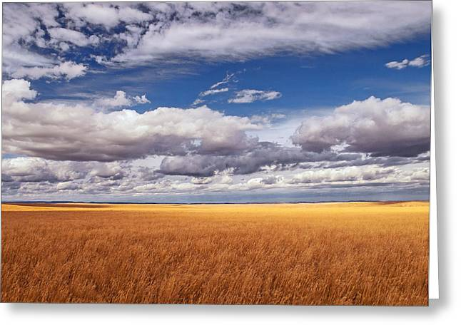 Prairies Photographs Greeting Cards - Prairie Wyoming U S A Greeting Card by Don Spenner
