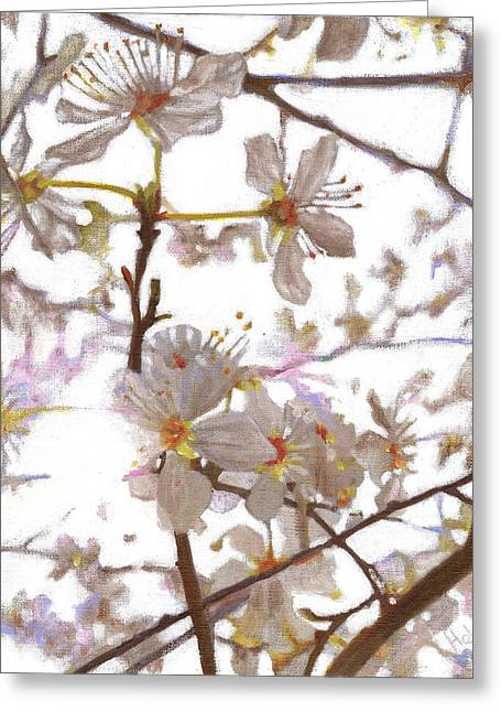 Luminescent Greeting Cards - Prelude Greeting Card by Helen White