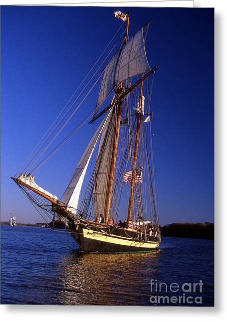 Sailboat Photos Greeting Cards - Pride Of Baltimore Ii Greeting Card by Skip Willits