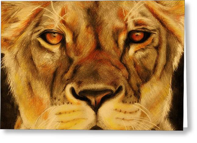 Soft Drawings Greeting Cards - Pride Greeting Card by Sheena Pike
