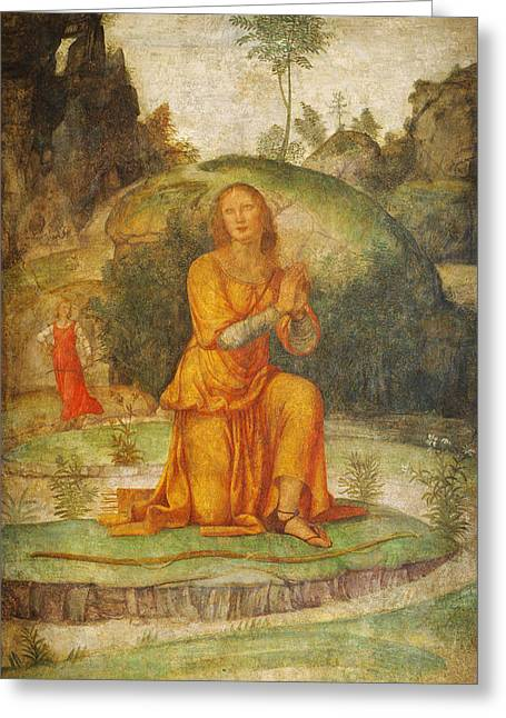 Procris Prayer To Diana Greeting Card by Celestial Images