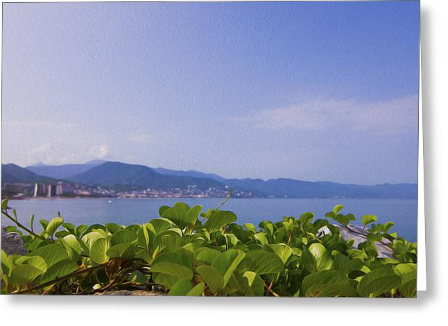 Mexico City Digital Greeting Cards - Puerto Vallarta Greeting Card by Aged Pixel