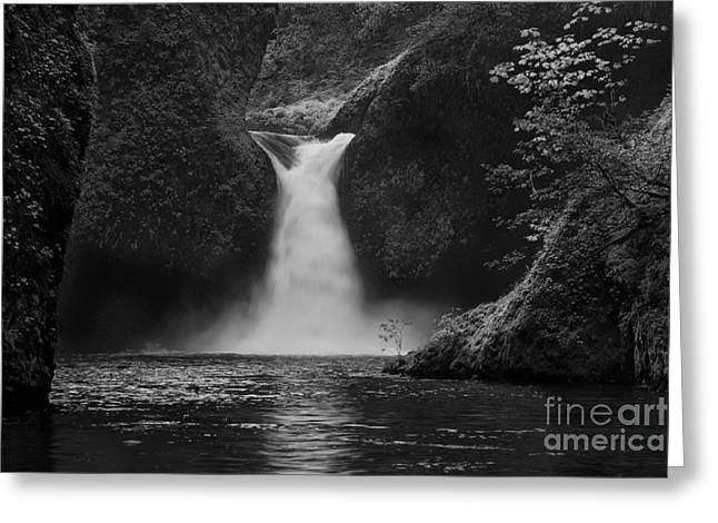 Waterfall Image Greeting Cards - Punchbowl Falls Greeting Card by Keith Kapple