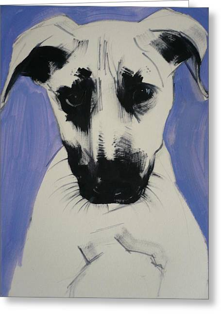 Puppies Photographs Greeting Cards - Puppy, 2011 Oil On Board Greeting Card by Sally Muir