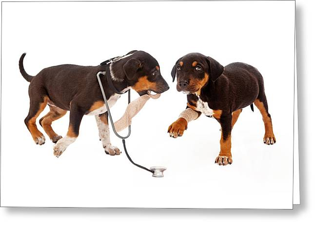 Puppies Greeting Cards - Puppy Veterinarian and Patient Greeting Card by Susan  Schmitz