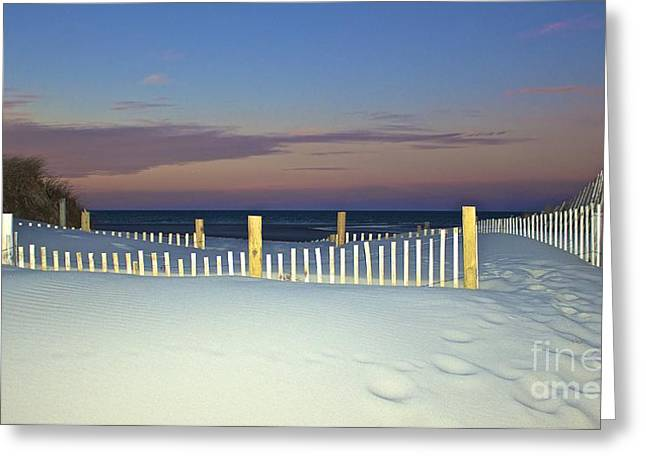 Mayflower Beach Greeting Cards - Purity Greeting Card by Amazing Jules