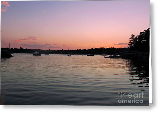 Somes Sound Greeting Cards - Purple Sky Greeting Card by Elizabeth Dow
