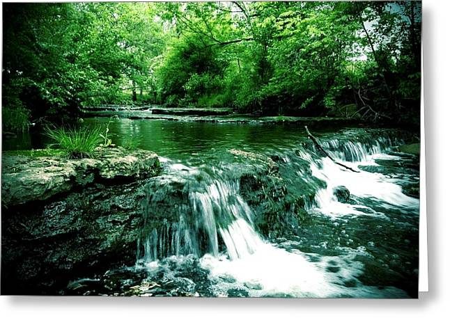 Andrew Martin Greeting Cards - Putney pond Greeting Card by Andrew Martin