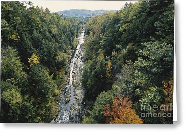 Fall Trees Greeting Cards - Quechee Gorge, Vermont Greeting Card by Gregory G. Dimijian, M.D.