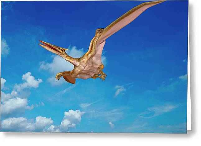 Quetzalcoatlus Pterosaur Greeting Card by Friedrich Saurer