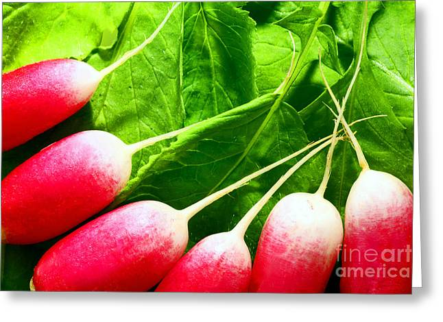 Fresh Radishes Greeting Cards - Radishes Greeting Card by Craig B