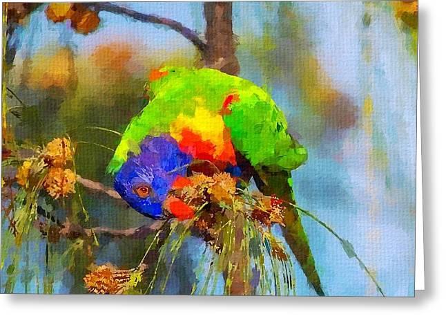 Rainbow Lorikeets Greeting Cards - Rainbow Lorikeet Greeting Card by Chris Butler