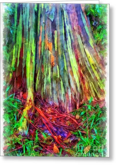 Colorful Bark Greeting Cards - Rainbow Trees of Maui Hawaii Greeting Card by Edward Fielding