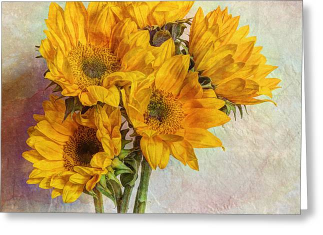 Old Pitcher Greeting Cards - Reaching For The Sun Greeting Card by Heidi Smith