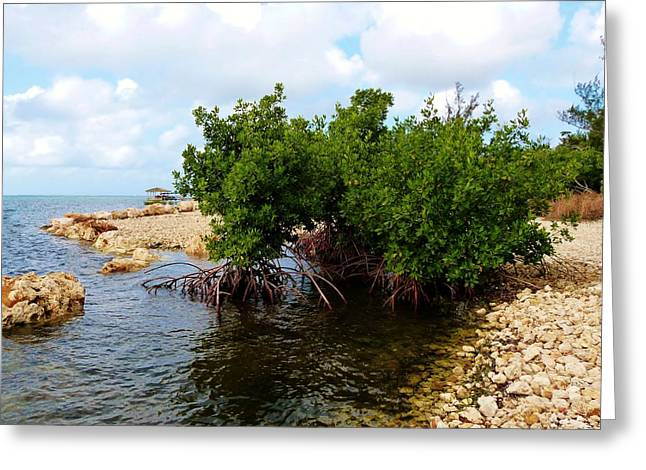Land Reclamation Greeting Cards - Reclamation 7 Greeting Card by Amar Sheow