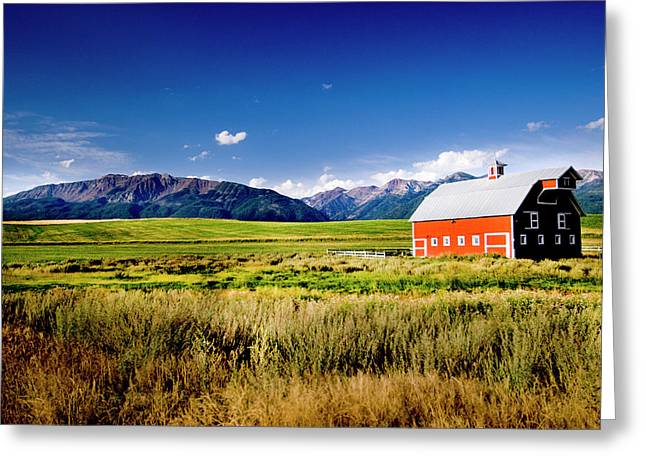 Red Barn In Field Near Joseph, Wallowa Greeting Card by Nik Wheeler