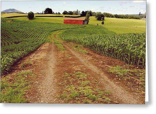 Rural Road Greeting Cards - Red barn Greeting Card by Les Cunliffe