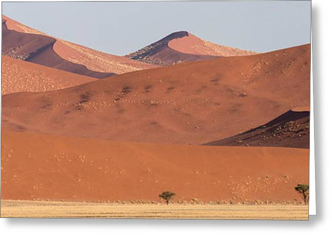Park Scene Greeting Cards - Red Dunes, Sossusvlei, Namib Desert Greeting Card by Panoramic Images