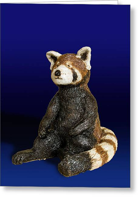 Red Clay Ceramics Greeting Cards - Red Panda Greeting Card by Jeanette K