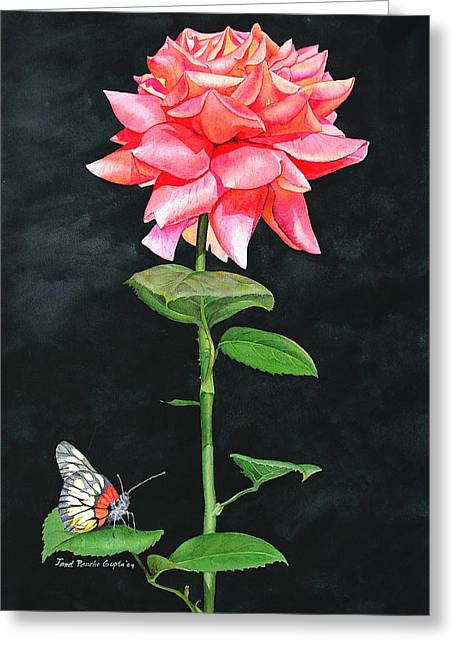 Photos With Red Greeting Cards - Red Rose and Butterfly Greeting Card by Janet Pancho Gupta