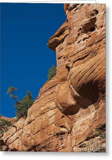 Hopi Indian Greeting Cards - Red Sandstone Cliffs & Trees At Palatki Greeting Card by Ellen Thane