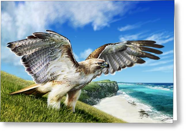 Red Tail Hawk Digital Art Greeting Cards - Red-tailed Hawk Greeting Card by Owen Bell