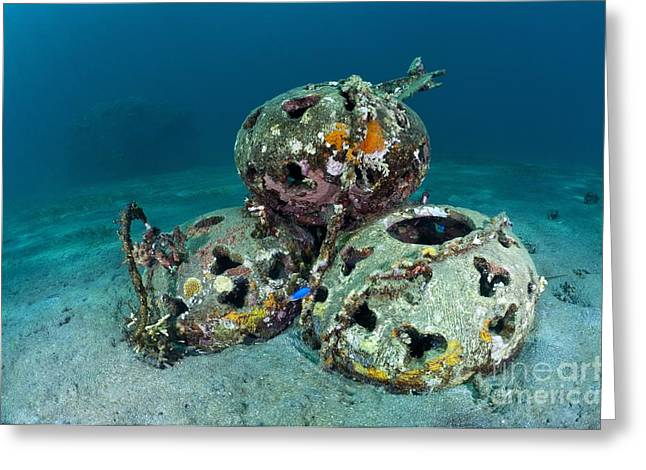 Reef Balls On The Sea Bed, Indonesia Greeting Card by Matthew Oldfield