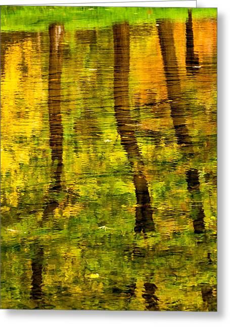 Bull Creek Greeting Cards - Reflecting On Autumn Greeting Card by Steve Harrington