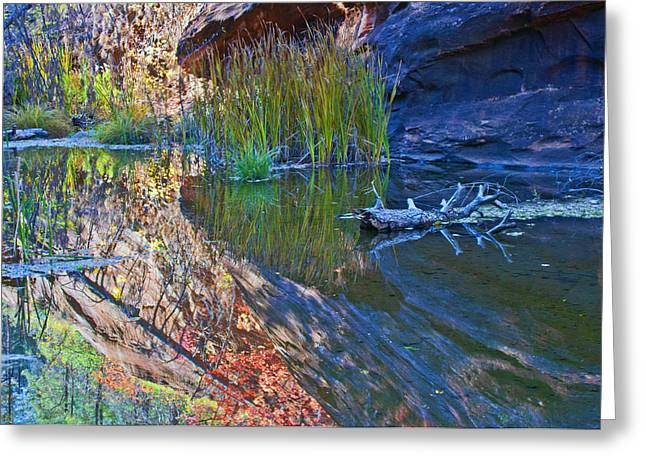 West Fork Greeting Cards - Reflection in the Water Greeting Card by Brian Lambert