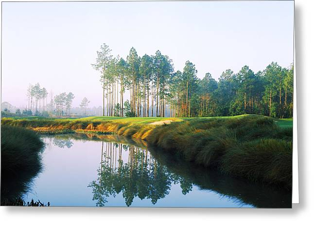 Slammer Greeting Cards - Reflection Of Trees On Water In A Golf Greeting Card by Panoramic Images