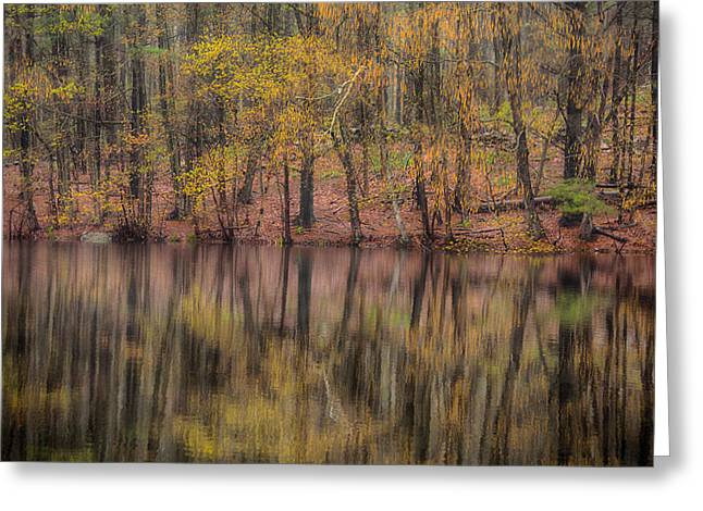 Reflections Of Life Greeting Card by Karol Livote