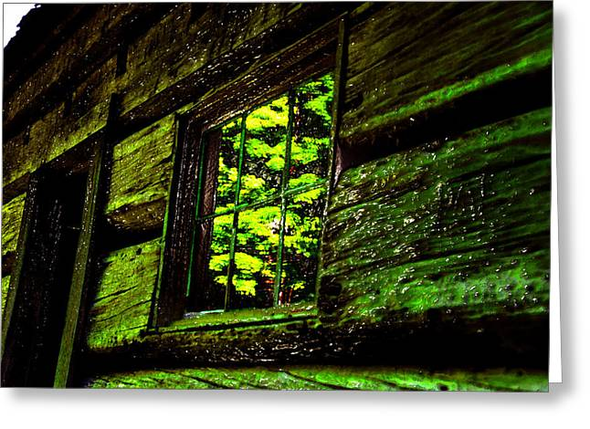 Cabin Window Greeting Cards - Reflections of the past Greeting Card by David Lee Thompson