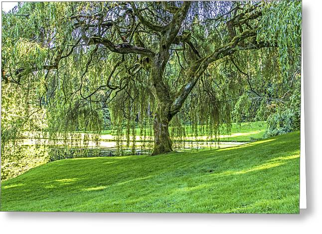 Branch Hill Pond Greeting Cards - Relax Greeting Card by Calazones Flics