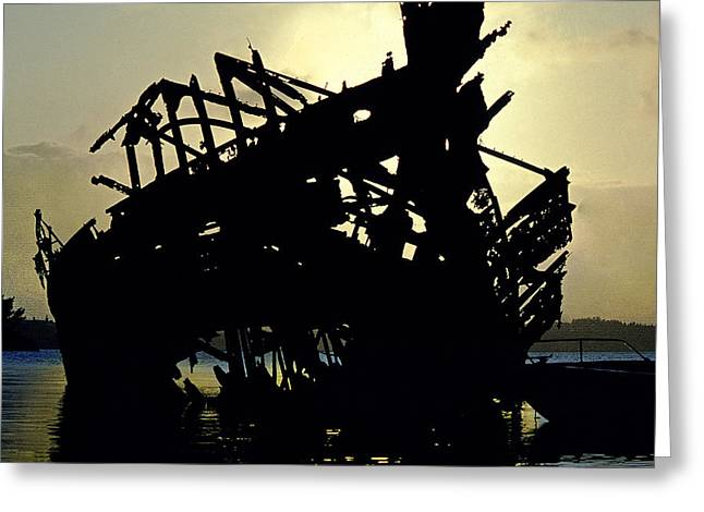 Ravaged By Time Greeting Cards - Remains of the Day Greeting Card by Mike Flynn