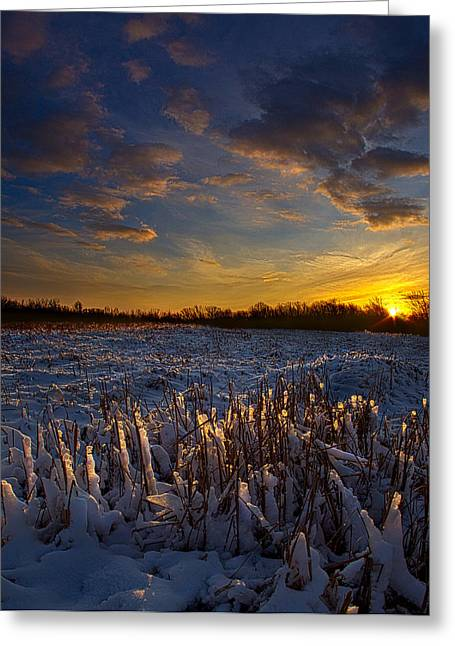 Geographic Greeting Cards - Remember When Greeting Card by Phil Koch