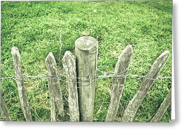 Border Greeting Cards - Rickety fence Greeting Card by Tom Gowanlock
