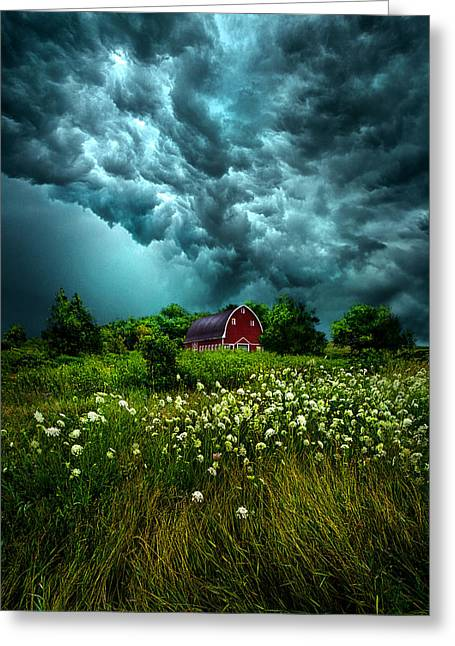 Severe Greeting Cards - Riding The Storm Out Greeting Card by Phil Koch