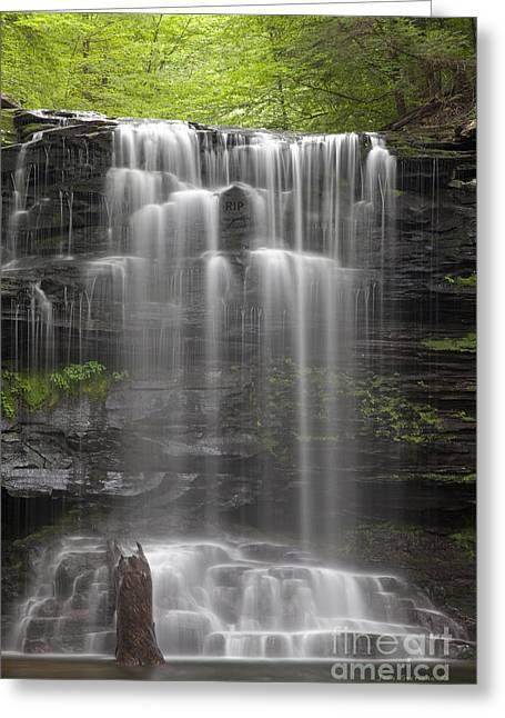 Weeping Greeting Cards - R.I.P. Weeping Wilderness Waterfall Greeting Card by John Stephens