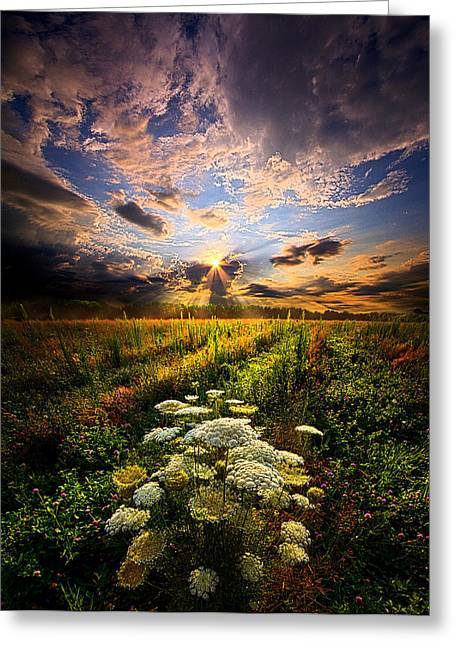 Flowers Photographs Greeting Cards - Rise and Shine Greeting Card by Phil Koch