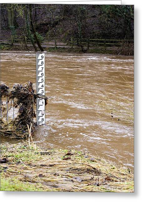 Flooding Greeting Cards - Rising River Level Greeting Card by Mark Williamson