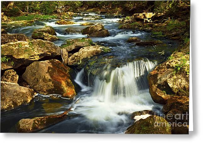 Clear Flowing Stream Greeting Cards - River rapids Greeting Card by Elena Elisseeva