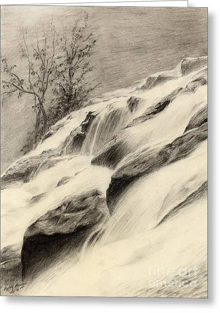 White River Drawings Greeting Cards - River Stream Greeting Card by Hailey E Herrera