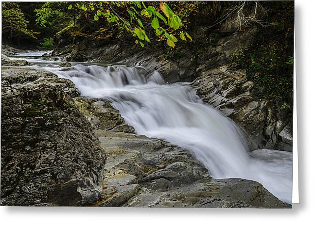 Green Day Greeting Cards - River Greeting Card by Tilyo Rusev
