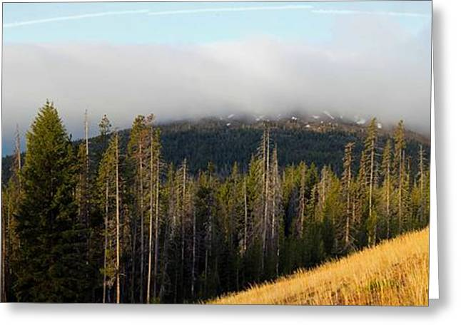 Mt Bachelor Greeting Cards - Road near Mount Bachelor Greeting Card by Twenty Two North Photography