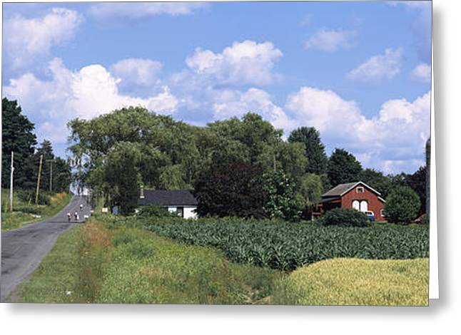 Finger Lakes Greeting Cards - Road Passing Through A Farm, Emmons Greeting Card by Panoramic Images