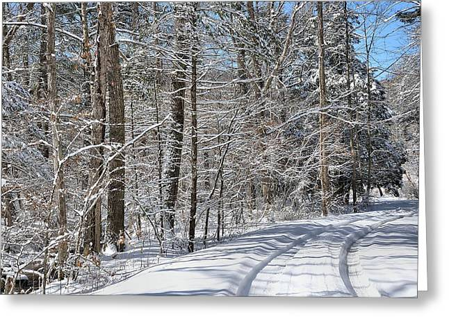 Amherst Greeting Cards - Road To Winter Greeting Card by Todd Hostetter