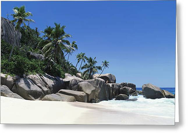 Tree In Rock Greeting Cards - Rock Formations On The Coast, Anse Greeting Card by Panoramic Images