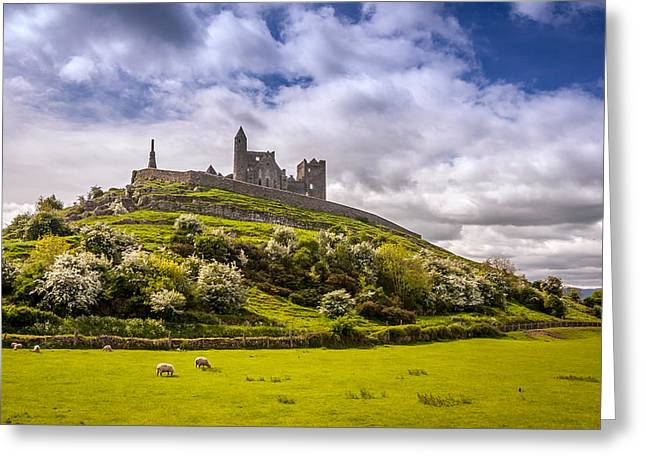 Sheep On Rocks Greeting Cards - Rock of Cashel Ireland Greeting Card by Pierre Leclerc Photography
